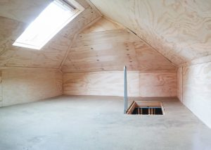 Basic storage attic with Velux Skylight and fold down ladder